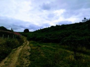 1st tee up the fairway